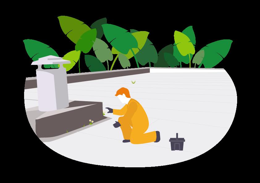 Démoussage de toiture ou terrasse
