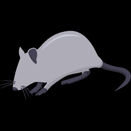 Piège à souris, solutions anti souris
