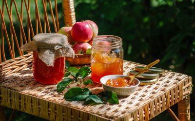 La prolifération des guêpes à la fin de l'été