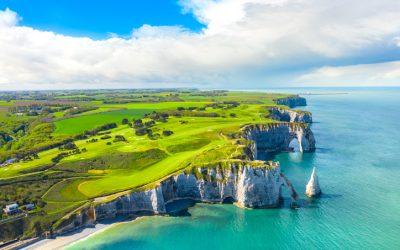 Lutte contre les nuisibles en Normandie